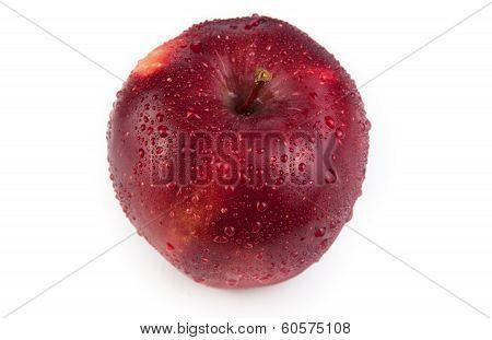 Maroon Apple Closeup