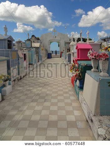 Graveyard In Campeche