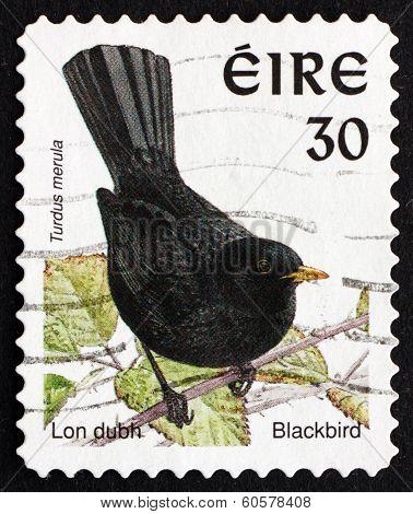 Postage Stamp Ireland 1998 Common Blackbird, Bird