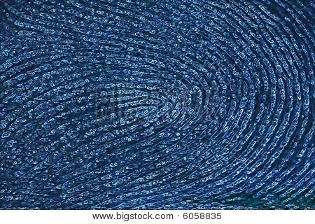 Stylized Fingerprint