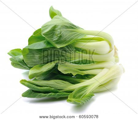 Pok Choi  Vegetable Isolated On White Background