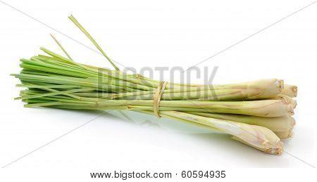 Lemongrass Isoleted On White Background