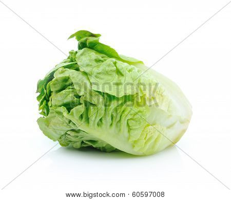 Fresh cabbage isolated on white background.