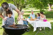 pic of extend  - Father and son at barbecue grill with extended family having lunch in the park - JPG