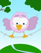 Unbalanced funny bird poster