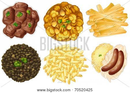 Illustration of the different sets of foods on a white background