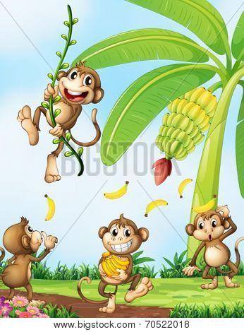 Illustration of the playful monkeys near the banana plant