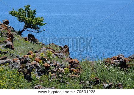 Sevan View