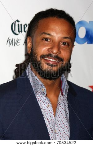 LOS ANGELES - AUG 21:  Brandon Jay McLaren at the OK! TV Awards Party at Sofiitel L.A. on August 21, 2014 in West Hollywood, CA
