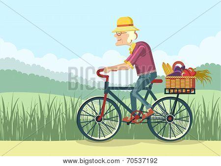 Old Woman Drive By Bike.vector Gardener
