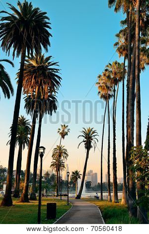 Los Angeles downtown park view with palm trees.