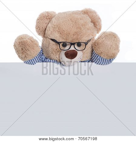 Isolated Teddy Bear Holding An Empty Sign Or Placard For Advertising