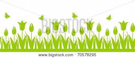 Tulips Border