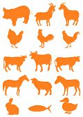 pic of farm animals  - Illustration of a set of farm animal shapes - JPG