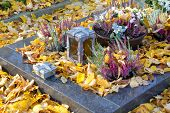 pic of obituary  - Autumn Decoration On The Tomb Full Of Leaves - JPG