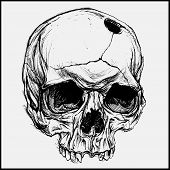 foto of dead-line  - Skull traditional drawing line work vector for Use - JPG
