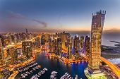 picture of skyscrapers  - Dubai Marina at Blue hour - JPG
