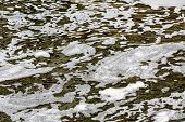 image of scum  - Dirty water stream with scum bubbles on surface - JPG