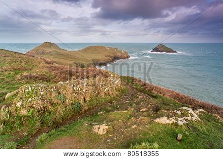 The rumps