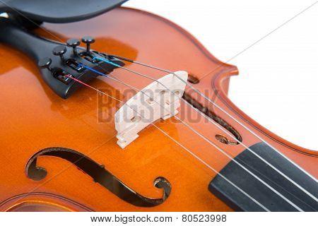 Close Up On The Bridge Of A Violin
