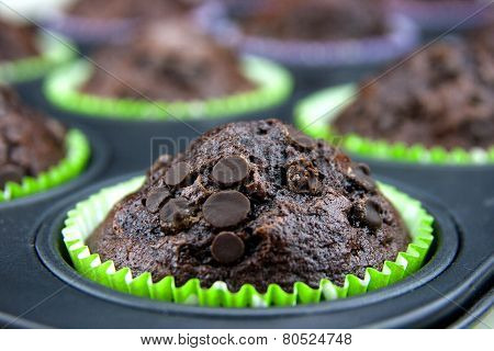 Freshly Baked Muffins With Drops Of Chocolate