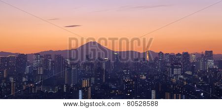 Tokyo city in evening with Tokyo tower and Fuji mountain