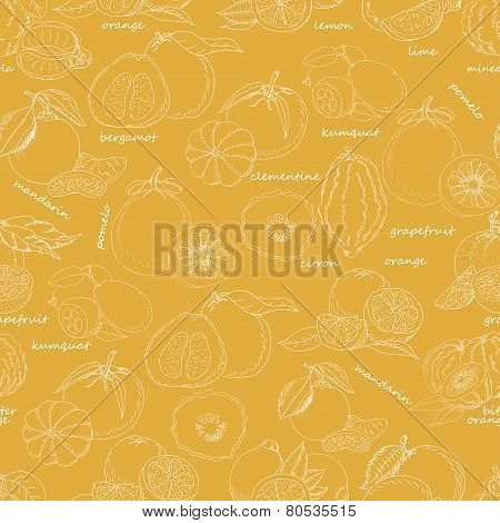 Seamless Pattern With Citrus Fruit On An Orange Background