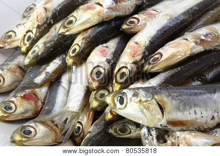 many genuine raw anchovies ready to Cook