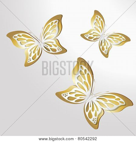 Paper Lace butterfly on gold background