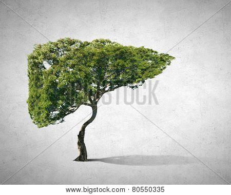 Conceptual image of green tree shaped like human liver