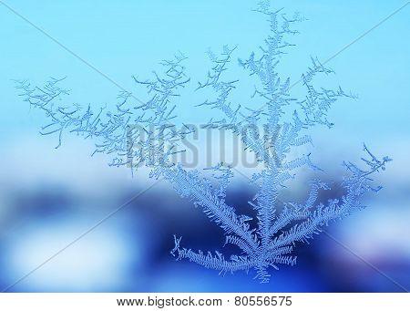 Snow Pattern On The Window