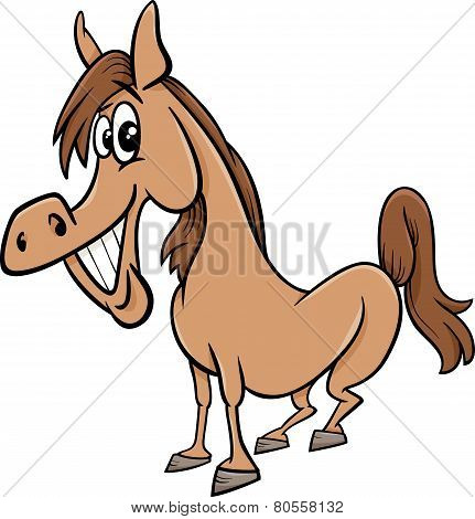 Farm Horse Cartoon Illustration