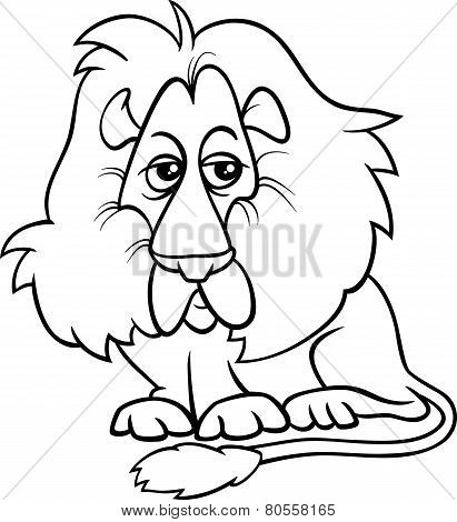 Lion Animal Cartoon Coloring Page