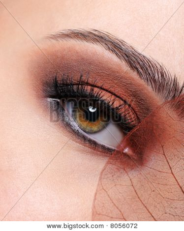 Woman Eye With A Brown Fashion Make-up