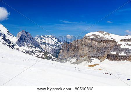 Summer ski slope in the summer.