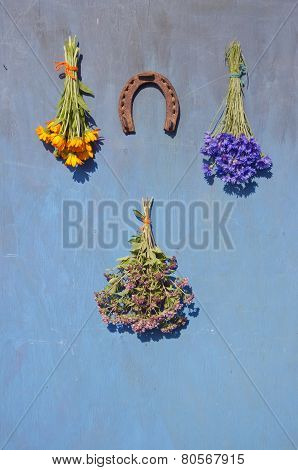 Horseshoe And Medical Flowers Herbs Bunch On Wall
