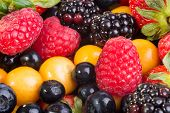 foto of grown up  - Up Close view of fresh berries of different types all mixed together - JPG