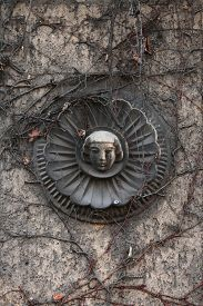 pic of century plant  - Old mascaron overgrown with climbing plants at the 19th century building in Berlin - JPG