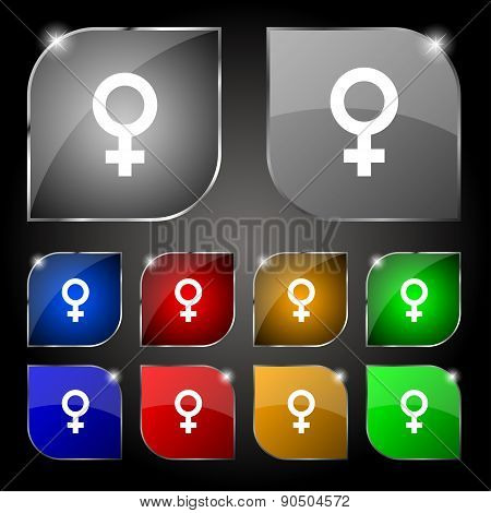 Symbols Gender, Female, Woman Sex Icon Sign. Set Of Ten Colorful Buttons With Glare. Vector