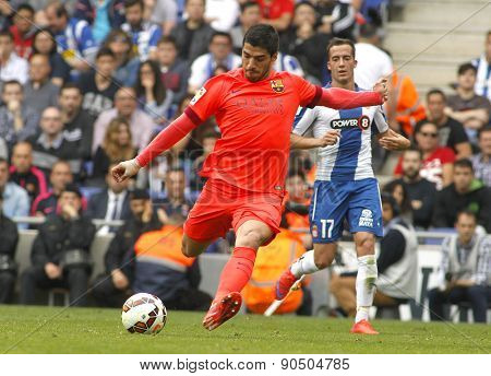 BARCELONA - APRIL, 25: Luis Suarez of FC Barcelona during a Spanish League match against RCD Espanyol at the Power8 stadium on April 25, 2015 in Barcelona, Spain