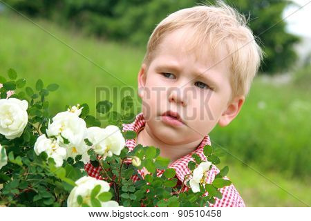 Dissatisfied Child Near The Flowers.