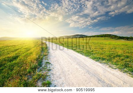 Roan lane in meadow and deep blue sky. Nature design.