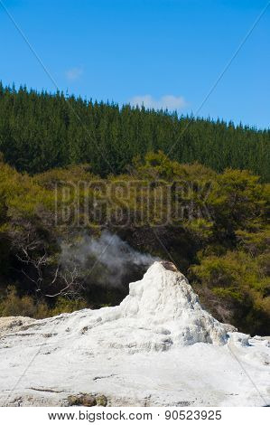 Lady Knox geyser is activated by a soap powder. Rotorua area, New Zealand