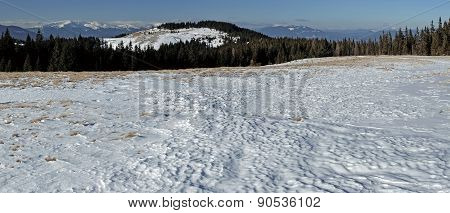 Panorama Of The Winter Landscape In The Mountains