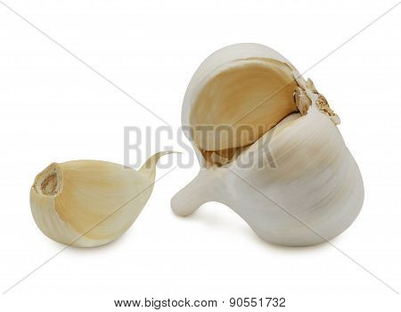 Head and clove of garlic