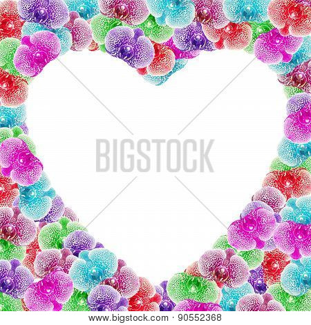 Heart Shape Of Colorful Orchid Flower