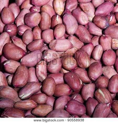 Red Peanut Kernels