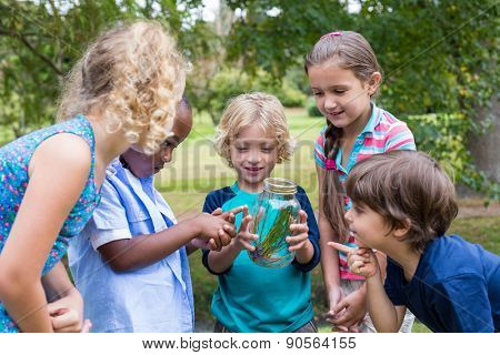 Happy siblings looking at a jar on a sunny day