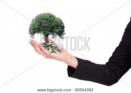 Businesswomans arm presenting against tree with green leaves growing