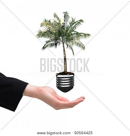 Businesswomans hand presenting against empty light bulb